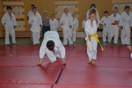 pokaz-aikido-zabrze-2016-dsc_8065