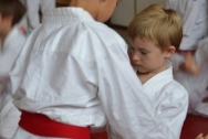 pokaz-aikido-zabrze-2016-dsc_8075