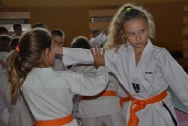 pokaz-aikido-zabrze-2016-dsc_8088