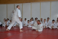 pokaz-aikido-zabrze-2016-dsc_8097